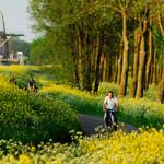 fietsen Mideen-Delfland